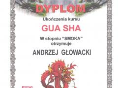 GUA-SHA