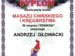 dyplom_03