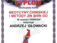 dyplom_04